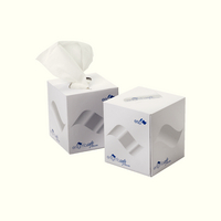 Facial Tissues Cream Box Pk24