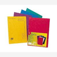 Europa Slipfile Assorted A Pk25